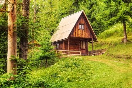 Mountain hut deep inside green forest. Standard-Bild