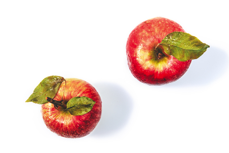 Top view of two fresh organic apples.