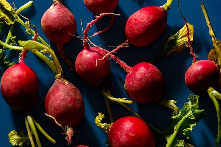 Close up of red radishes against blue background. Banco de Imagens - 128572358