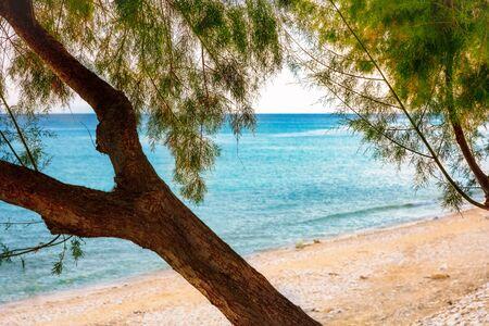 Detail of sandy mediterranean beach.