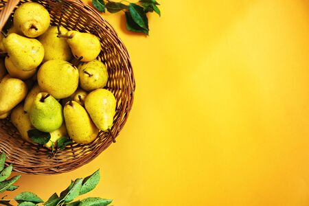 Wooden basket, full of organic pears against yellow background, with negative space next to it.