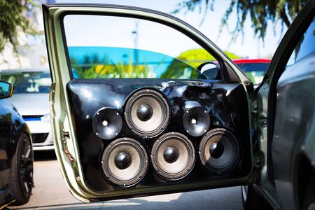 Custom made car speakers, installed in car door.