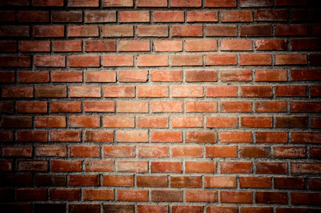 brick background: The background from the old brick wall