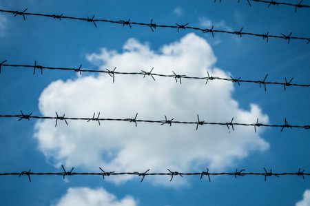 The rusty barbed wire fence and blue background Stock Photo