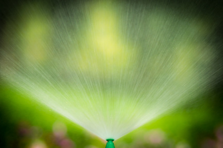 Water from sprinkler in the public park