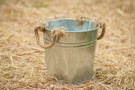 vegetable tin: The bucket,gardening tools or agriculture tools