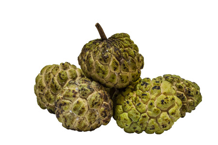 custard apple isolated on white backgound 版權商用圖片