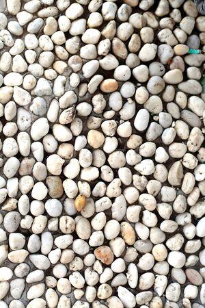 texture white rock  Stock Photo