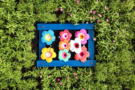 color of flower background Stock Photo - 13996944