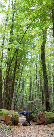 sylvan: Vertical-Panorama image of young adult wamen on Lake Sylvan Track. This well-defined track leads through old moraine river terraces and tall red beech to pretty Lake Sylvan in Mount Aspiring National Park. Stock Photo
