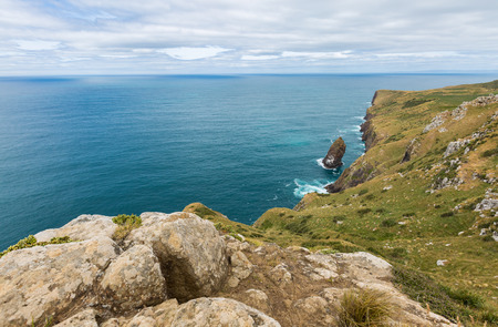 new zealand flax: Cliffs on the rough side of the Otago Peninsula New Zealand