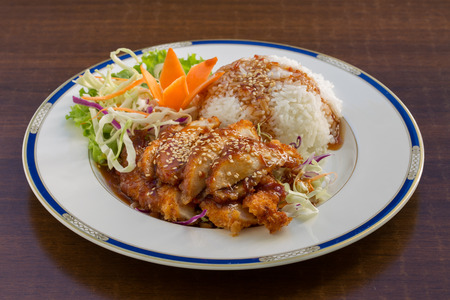 rice plate: image of crispy Chicken on Rice Stock Photo