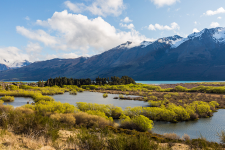 river: Wetland swamp in glacial Rees Dart river valley in Glenorchy, New Zealand