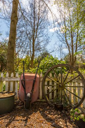 bullock: garden wheelbarrow and and old bullock cart wheel in the garden