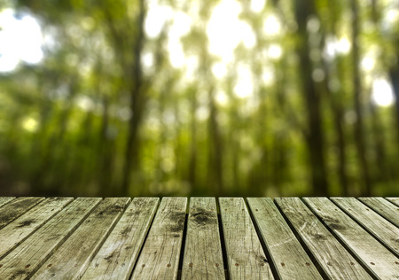 space wood: wooden pier with blurry forest background