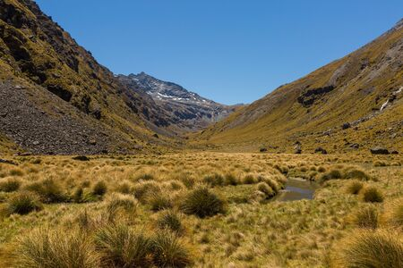 mountain valley: beautiful mountain valley landscape with tussock field
