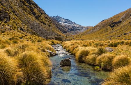beautiful mountain valley landscape with stream on Wye Creek Track, New Zealand Stok Fotoğraf - 49935617