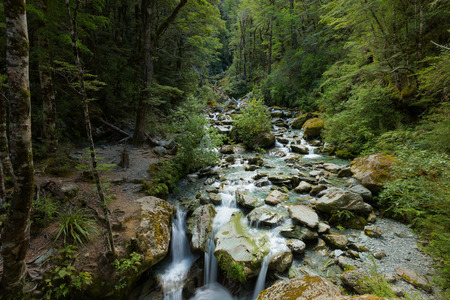 tramping: Sugar Loaf Stream on Routeburn Track, New Zealand