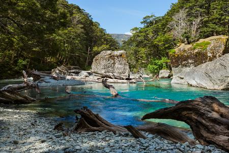 tramping: Beautiful turquoise creek on Routeburn Track, New Zealand