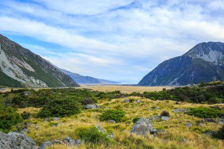 aoraki mount cook national park: meadow and mountain landscape in Mount Cook National Park, New Zealand