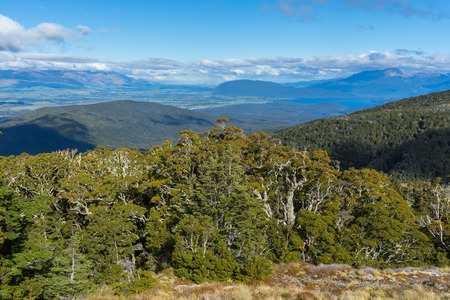 anau: Beautiful landscape of Kepler Track, one of the New Zealand Great Walks. Stock Photo