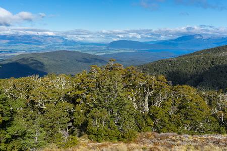 anau: Beautiful landscape of Kepler Track, one of the New Zealand Great Walks. Stock Photo
