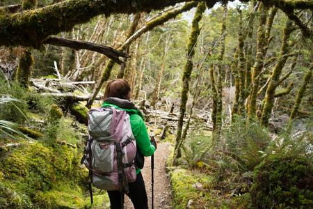 kepler: Woman hiker walking in the forest on Kepler Track, New Zealand Stock Photo