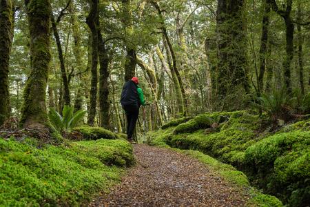 kepler: Woman hiker is enjoying the kepler track in New Zealand