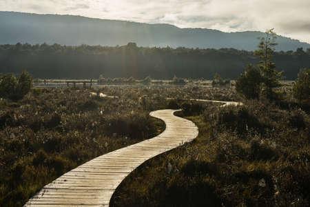 te: Path along the Kepler track in Te Anau, New Zealand