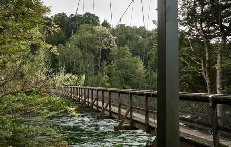 kepler: Swingbridge at Kepler track in Te Anau, New Zealand
