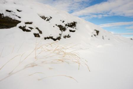 coronet: landscape white mountain at Coronet peak, Queenstown New Zealnad