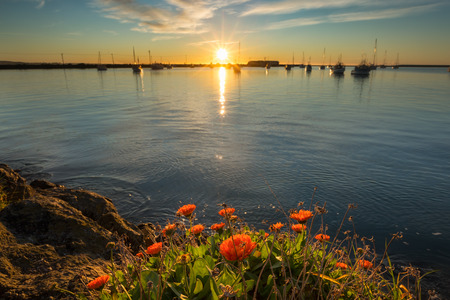 Sunrise at Oamaru harbor, New Zealand