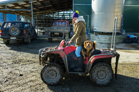 Young adult woman working in a dairy farm with her dog