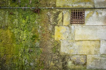 Grunge brick wall with green moss Stok Fotoğraf - 68490133