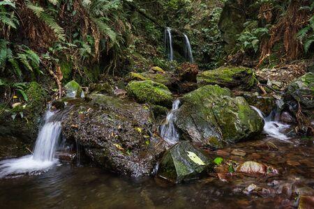 Sanders Falls in Waimate, New Zealand Stok Fotoğraf
