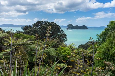 Cathedral Cove in Coromandel-Halbinsel, Neuseeland Standard-Bild - 69080482