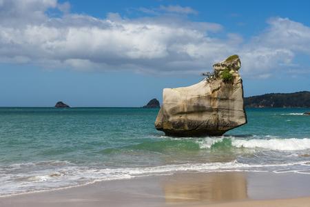 Schöne Aussicht auf Cathedrol Cove Beach in Neuseeland Standard-Bild - 69914906