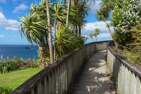 Wooden boardwalk to the beach in New Zealand