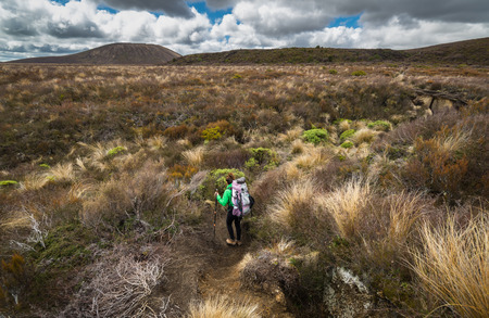 Woman hiker with backpack tramping on Tongariro national park in New Zealand Standard-Bild
