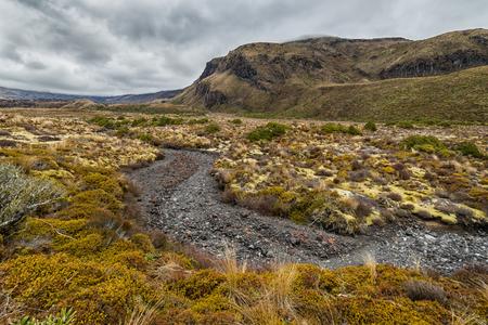 Schöne Landschaft des Tongariro Nationalparks, Neuseeland Standard-Bild - 70640890