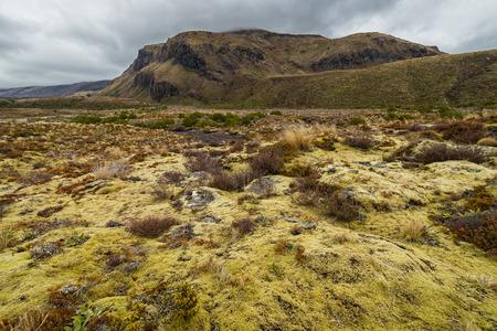 Schöne Landschaft des Tongariro Nationalpark, Neuseeland Standard-Bild - 71699973