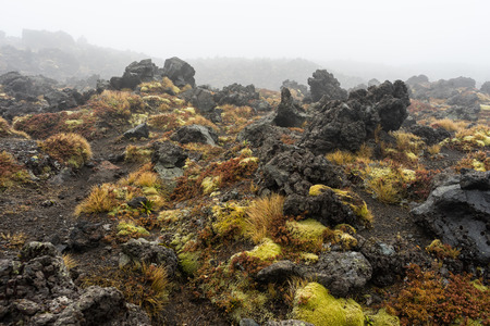 Volcanic rocks formation at Tongariro national park, New Zealand Standard-Bild