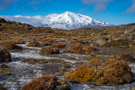 Mount Ruapehu in Tongariro national park, New Zealand