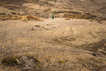 Woman hiker walking on dessert area in Tongariro national park, New Zealand