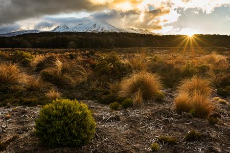 Sonnenuntergangst.-Berg Ruapehu in Nationalpark Tongariro, Neuseeland Standard-Bild - 72833488