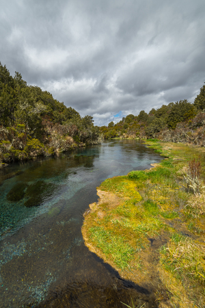 Ohinepango Springs near Waihohonu Hut, Tongariro national park