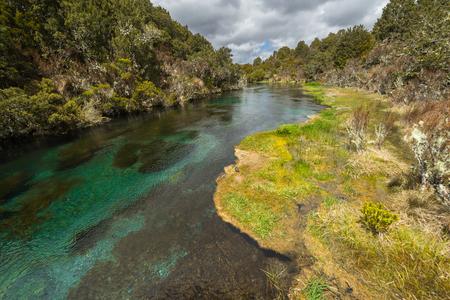 Ohinepango Springs nahe Waihohonu Hut, Tongariro Nationalpark Standard-Bild - 73043628
