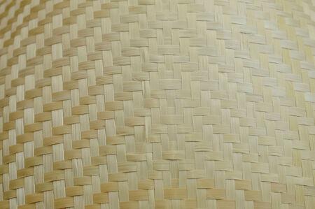 webbing: Beautiful Background webbing pattern  1