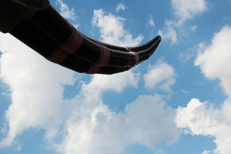 tusk: The tusk on the sky background Stock Photo