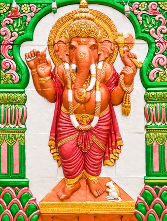 Ganesh was a white rat in the foot photo